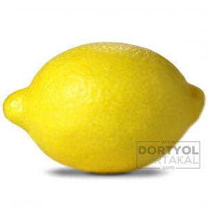 Kütdiken Limon