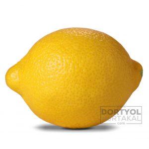 Mayer Limon
