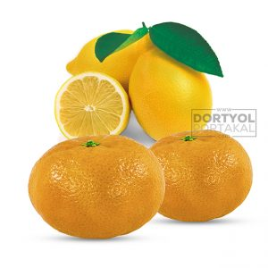 Mandalina ve Limon 10 Kg