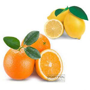 Valencia Portakal – Limon 10 Kg