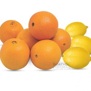 Washington Portakal – Limon 10 Kg